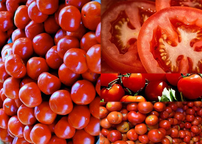 Tomato nutrition facts and health benefits