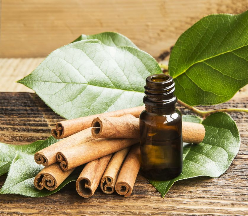 Health Benefits of Cinnamon Essential oil