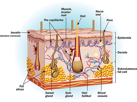 skin conditions and their treatment