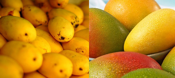Nutrition Facts and health Benefits of mango