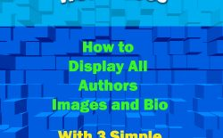 How to display all authors in wordpress without plugin