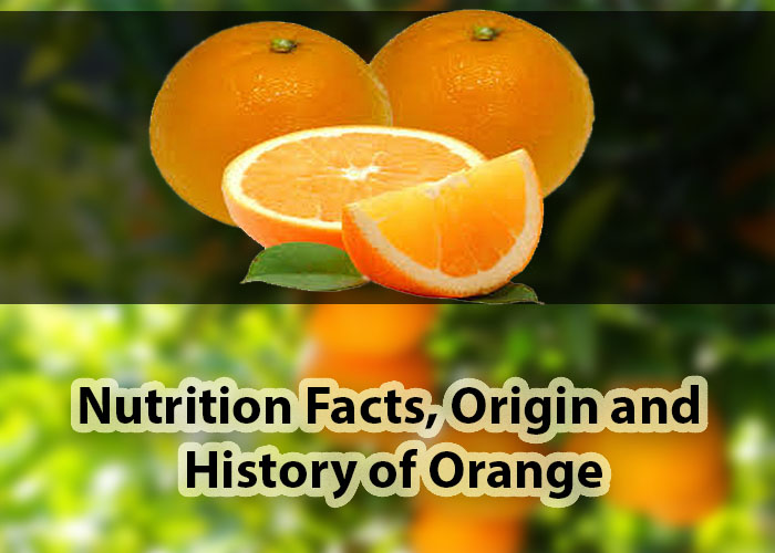 Nutrition Facts of Orange, history and its origin