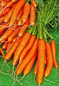Vitamin E in carrots dehydrated