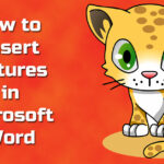 How to insert Picture in Ms Word