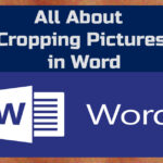 How to crop pictures in microsoft word