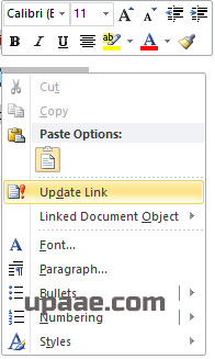 update link in ms word for paste special option.